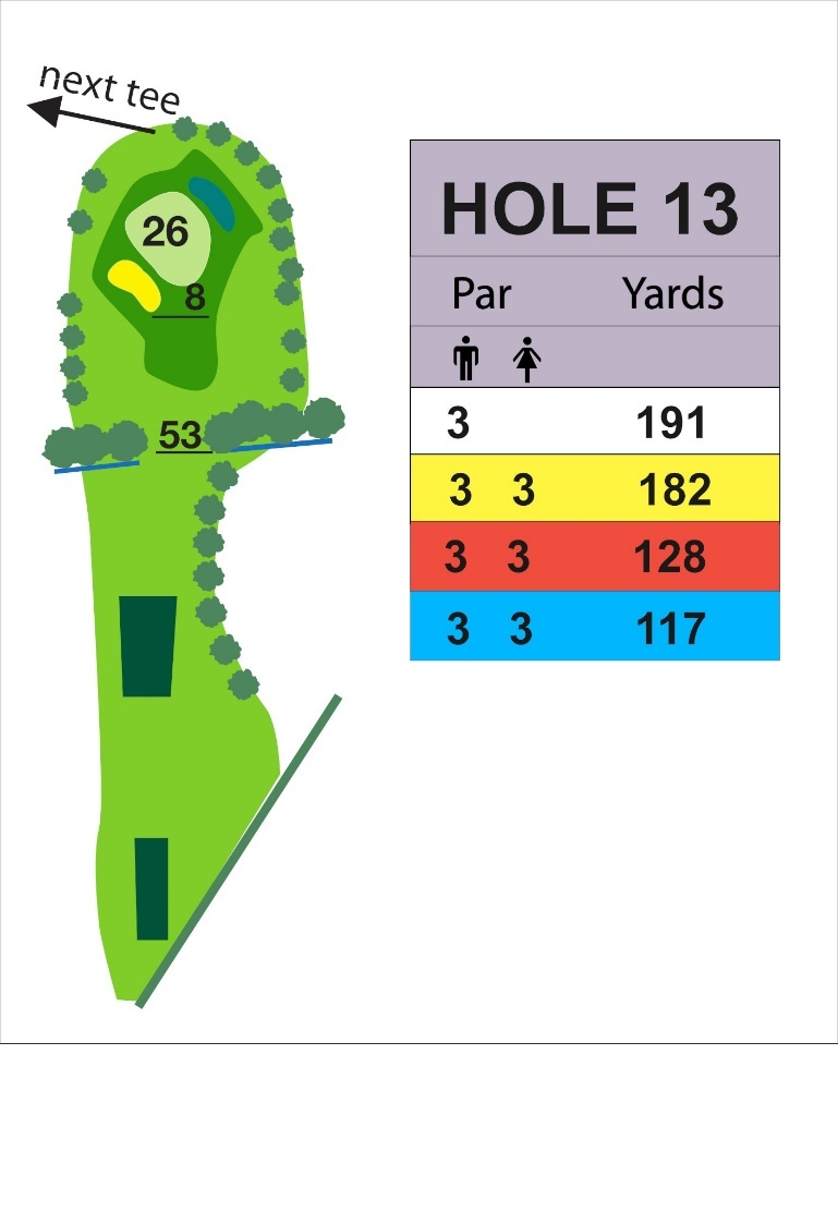 Hole 13 The Notleys GC